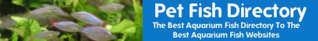 Pet Fish Directory